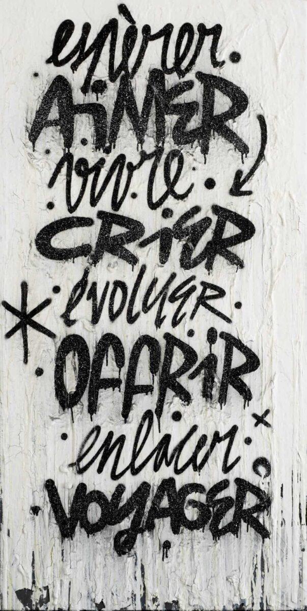Denis Meyers art urbain enchères