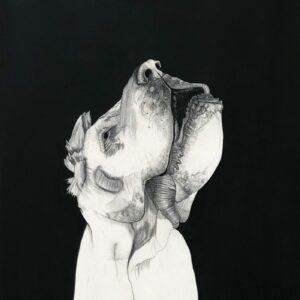 Mateo ANDREA - Perrito Señor - 2015 - Technique mixte sur toile